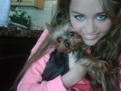 "Miley Cyrus, aka Hannah Montana with Puppy ""Shooter"""