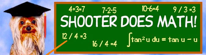 Shooter Does Math!